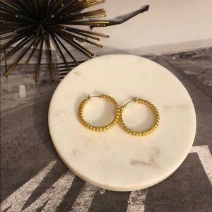 💸 SALE Sorrelli Bright Gold Hoop Earrings
